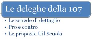 deleghe_107